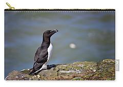 Razorbill Carry-all Pouch by Vicki Field