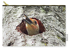 Red-bellied Woodpecker 03 Carry-all Pouch by Al Powell Photography USA