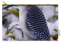 Red Bellied Woodpecker Carry-all Pouch by Ron Jones