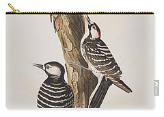Red-cockaded Woodpecker Carry-all Pouch by John James Audubon