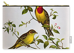Red Headed Bunting Carry-all Pouch by John Gould