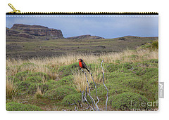 Red Long-tailed Medowlark Bird, Patagonia, National Park Torres Del Paine, Chile. Carry-all Pouch by Anna Soelberg