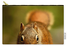 Red Squirrel   Carry-all Pouch by Cale Best