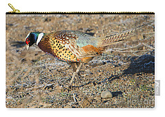 Ring-necked Pheasant Rooster Carry-all Pouch by Mike Dawson