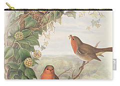Robin Carry-all Pouch by John Gould
