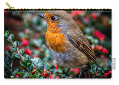 Robin Redbreast Carry-all Pouch by Adrian Evans
