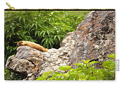 Rock Chuck Carry-all Pouch by Lana Trussell