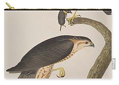 Sharp-shinned Hawk Carry-all Pouch by John James Audubon
