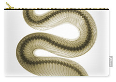 Southern Pacific Rattlesnake, X-ray Carry-all Pouch by Ted Kinsman