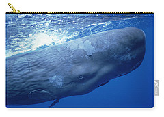 Sperm Whale Underwater Portrait Carry-all Pouch by Flip Nicklin