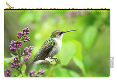Spring Beauty Ruby Throat Hummingbird Carry-all Pouch by Christina Rollo