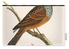Striolated Bunting Carry-all Pouch by English School