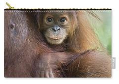 Sumatran Orangutan 9 Month Old Baby Carry-all Pouch by Suzi Eszterhas