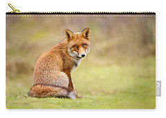 That Look - Red Fox Male Carry-all Pouch by Roeselien Raimond