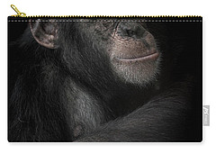 The Dream Catcher Carry-all Pouch by Paul Neville