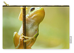 The Pole Dancer - Climbing Tree Frog  Carry-all Pouch by Roeselien Raimond