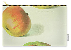 Three Apples Carry-all Pouch by English School