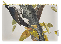 Three Toed Woodpecker Carry-all Pouch by John James Audubon