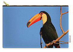 Toco Toucan Carry-all Pouch by Bruce J Robinson