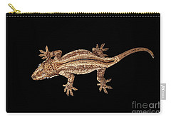 Top View Of Gargoyle Gecko, Rhacodactylus Auriculatus Staring Isolated On Black Background. Native T Carry-all Pouch by Sergey Taran