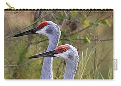 Two Sandhills In Green Carry-all Pouch by Carol Groenen