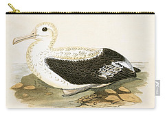 Wandering Albatross Carry-all Pouch by English School