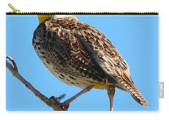 Western Meadowlark One  Carry-all Pouch by Angela Koehler