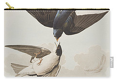 White-bellied Swallow Carry-all Pouch by John James Audubon