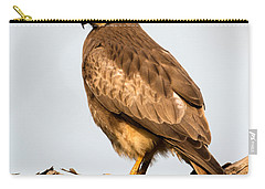 White-eyed Buzzard Butastur Teesa Carry-all Pouch by Panoramic Images