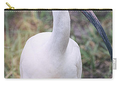 White Ibis In The Morning Light  Carry-all Pouch by Saija  Lehtonen