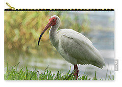 White Ibis On The Florida Shore  Carry-all Pouch by Saija Lehtonen