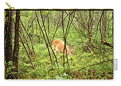 Carry-all Pouch featuring the photograph White-tailed Deer In A Misty, Pennsylvania Forest by A Gurmankin