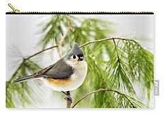 Winter Pine Bird Carry-all Pouch by Christina Rollo