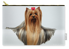 Yorkshire Terrier Dog With Long Groomed Hair Lying On White  Carry-all Pouch by Sergey Taran