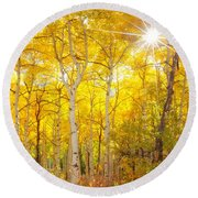 Aspen Morning Round Beach Towel by Darren  White