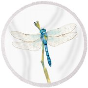 Blue Dragonfly Round Beach Towel by Amy Kirkpatrick