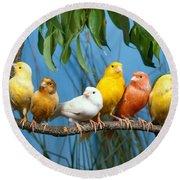 Canaries Round Beach Towel by Hans Reinhard