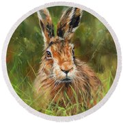 hARE Round Beach Towel by David Stribbling