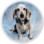 Kippy Beagle Senior And Best Dog Ever Round Beach Towel by Iris Richardson