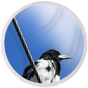 Magpie Up High Round Beach Towel by Jorgo Photography - Wall Art Gallery