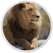 Majestic Lion Round Beach Towel by Sharon Foster