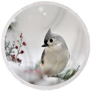 Tufted Titmouse Square Round Beach Towel by Christina Rollo