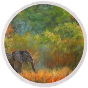 African Elephant Round Beach Towel by David Stribbling