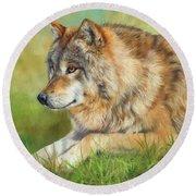 Grey Wolf Round Beach Towel by David Stribbling