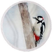Woodpecker Round Beach Towel by Heike Hultsch