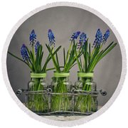 Hyacinth Still Life Round Beach Towel by Nailia Schwarz