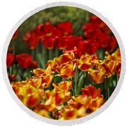 Red And Yellow Tulips Round Beach Towel by Nailia Schwarz
