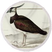 A Lapwing Round Beach Towel by Nicolas Robert