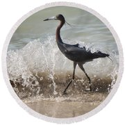 A Morning Stroll Interrupted Round Beach Towel by Gary Slawsky