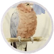 A Rose Breasted Cockatoo Round Beach Towel by Henry Stacey Marks